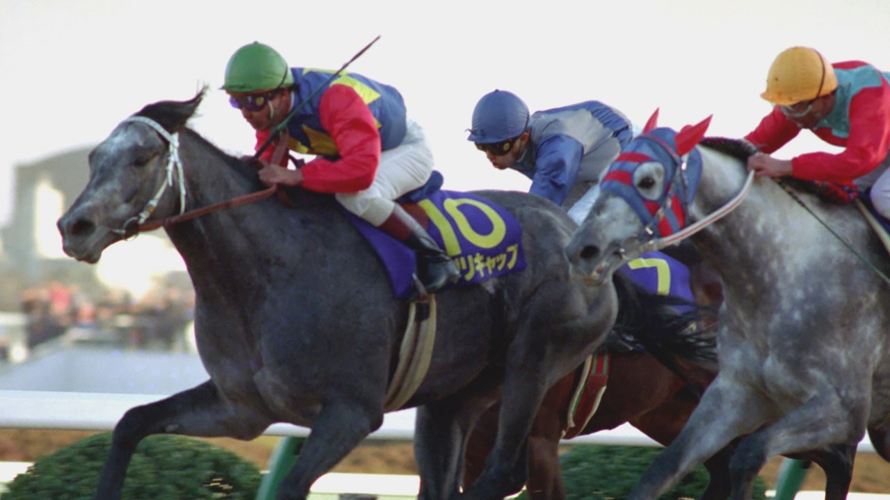 有馬記念で振り返る競馬ブーム(上)
