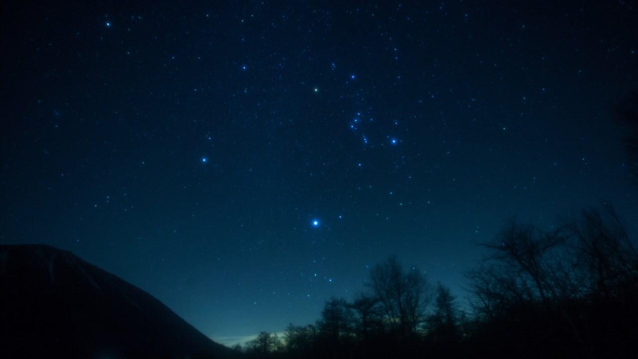 競馬で学ぶ冬の星空