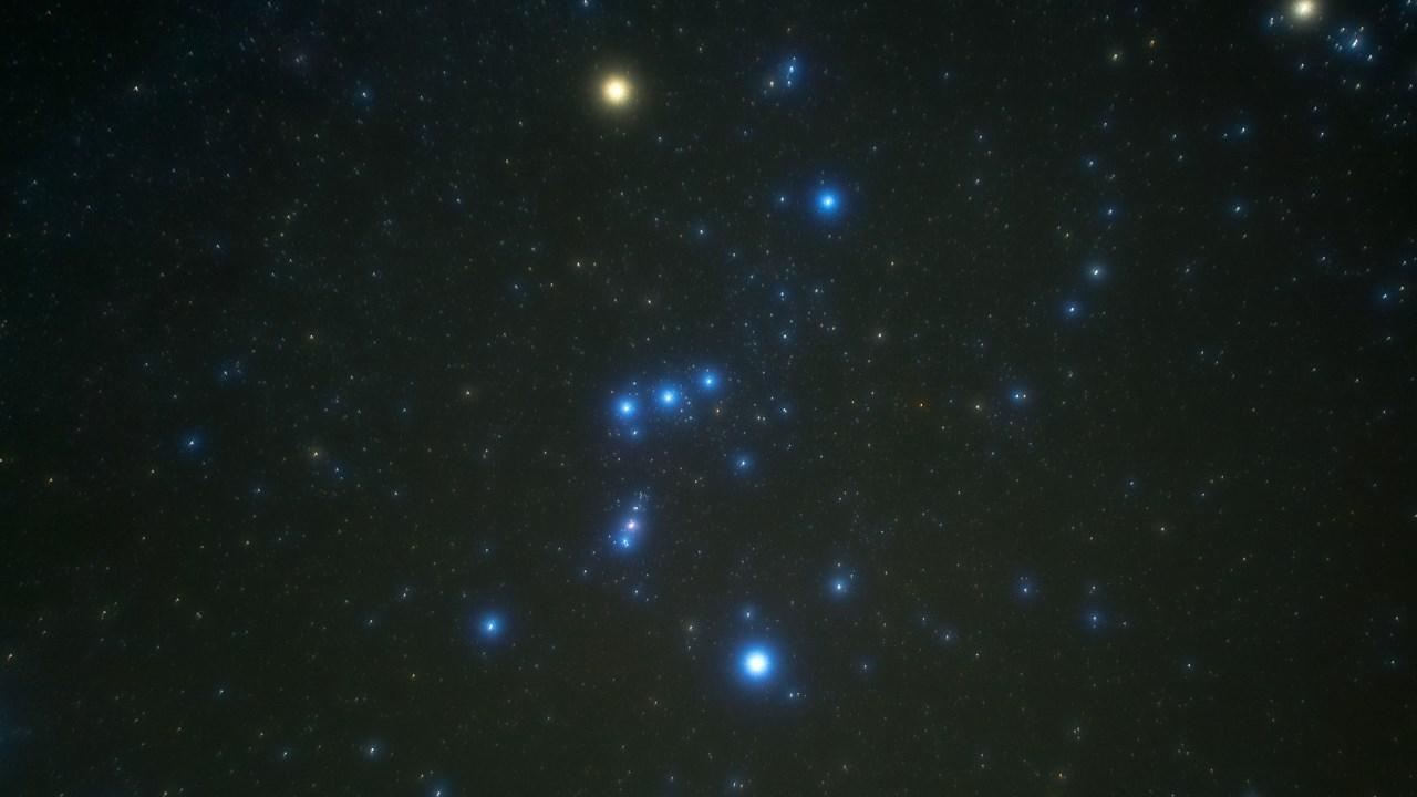 オリオンの一等星たち