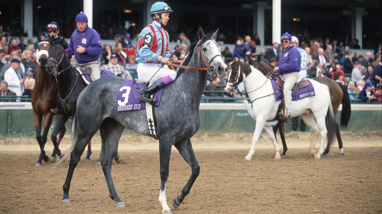 牝馬による海外初勝利の軌跡