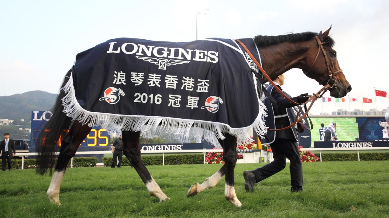 最終直線〜世界へ広がる『最強馬』の遺伝子