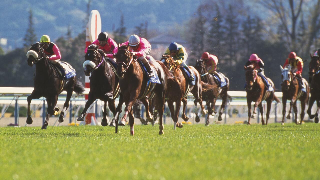 エピローグ −競馬が持つ原初の興奮とは