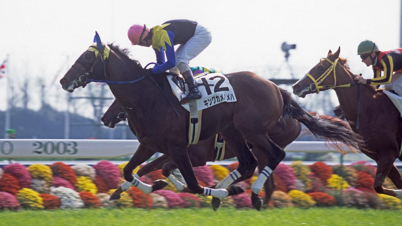 NHKマイルC&ダービー制覇という鮮烈なインパクトを残した現役時代