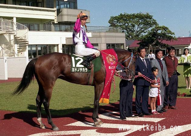 ヨドノチカラ | 競走馬データ - netkeiba.com