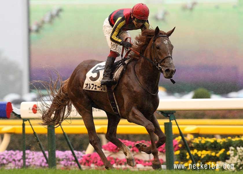 「歴代最強の日本ダービー馬」1位 オルフェーヴル