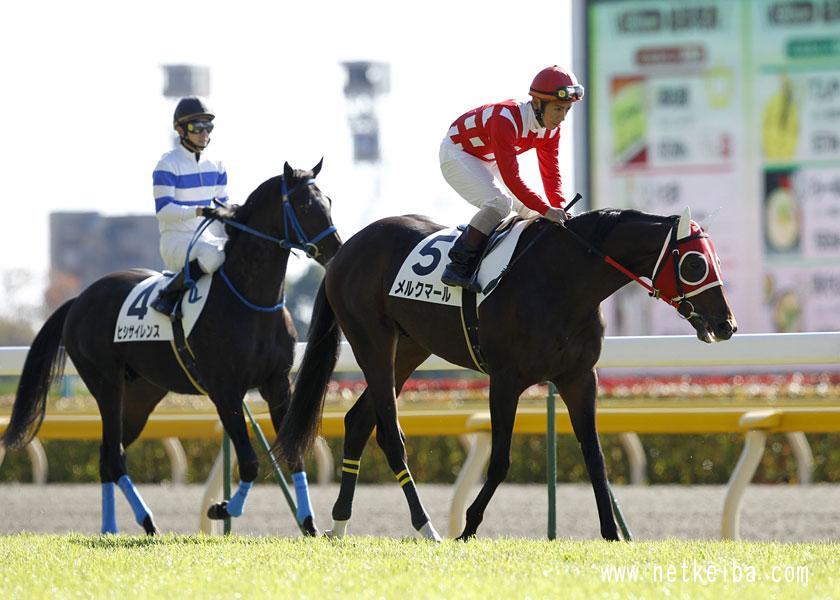 メルクマール | 競走馬データ - netkeiba.com