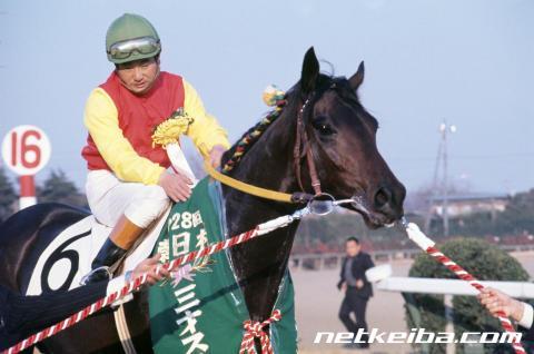 マルゼンスキー | 競走馬データ - netkeiba.com