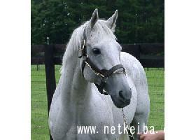 メジロマックイーン | 競走馬データ - netkeiba.com