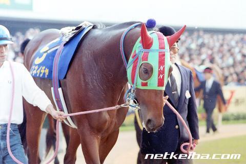 ナイスネイチャ | 競走馬データ - netkeiba.com