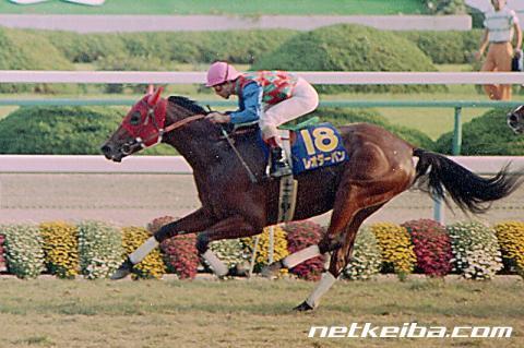 レオダーバン | 競走馬データ - netkeiba.com