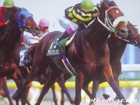 アメリカンボス | 競走馬データ - netkeiba.com