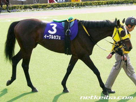 イーグルカフェ | 競走馬データ - netkeiba.com