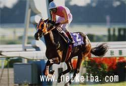 テイエムオーシャン | 競走馬データ - netkeiba.com
