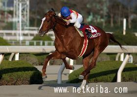 マイネルエクソン   競走馬データ - netkeiba.com