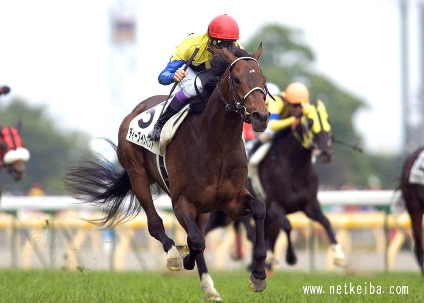 2005年に史上6頭目の三冠馬となったディープインパクト