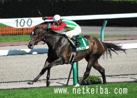 アサヒライジング | 競走馬データ - netkeiba.com