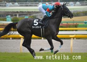 クイーンオリーブ   競走馬データ - netkeiba.com