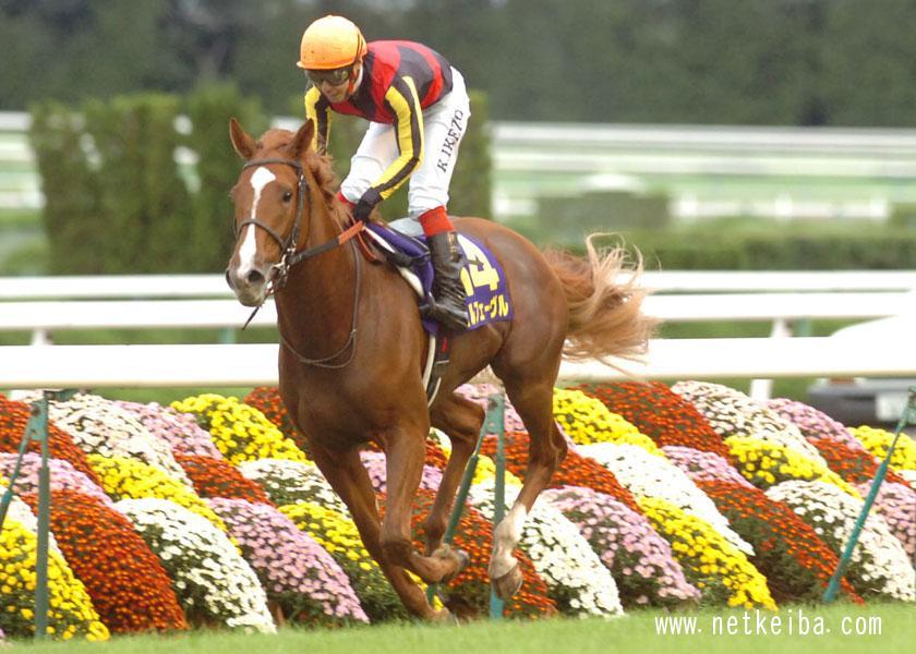 2011年に史上7頭目の三冠馬となったオルフェーヴル
