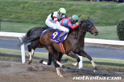 アウォーディー   競走馬データ - netkeiba.com