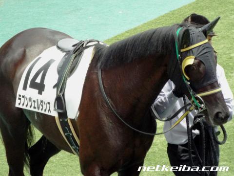 ラプンツェルダンス 競走馬データ Netkeibacom
