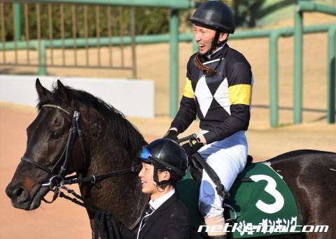 ジョーダンキング | 競走馬データ - netkeiba.com