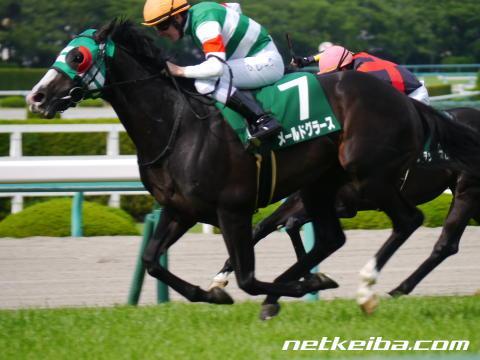 メールドグラース | 競走馬データ - netkeiba.com