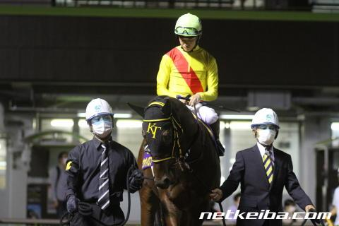 ヴァヴィロフ | 競走馬データ - netkeiba.com
