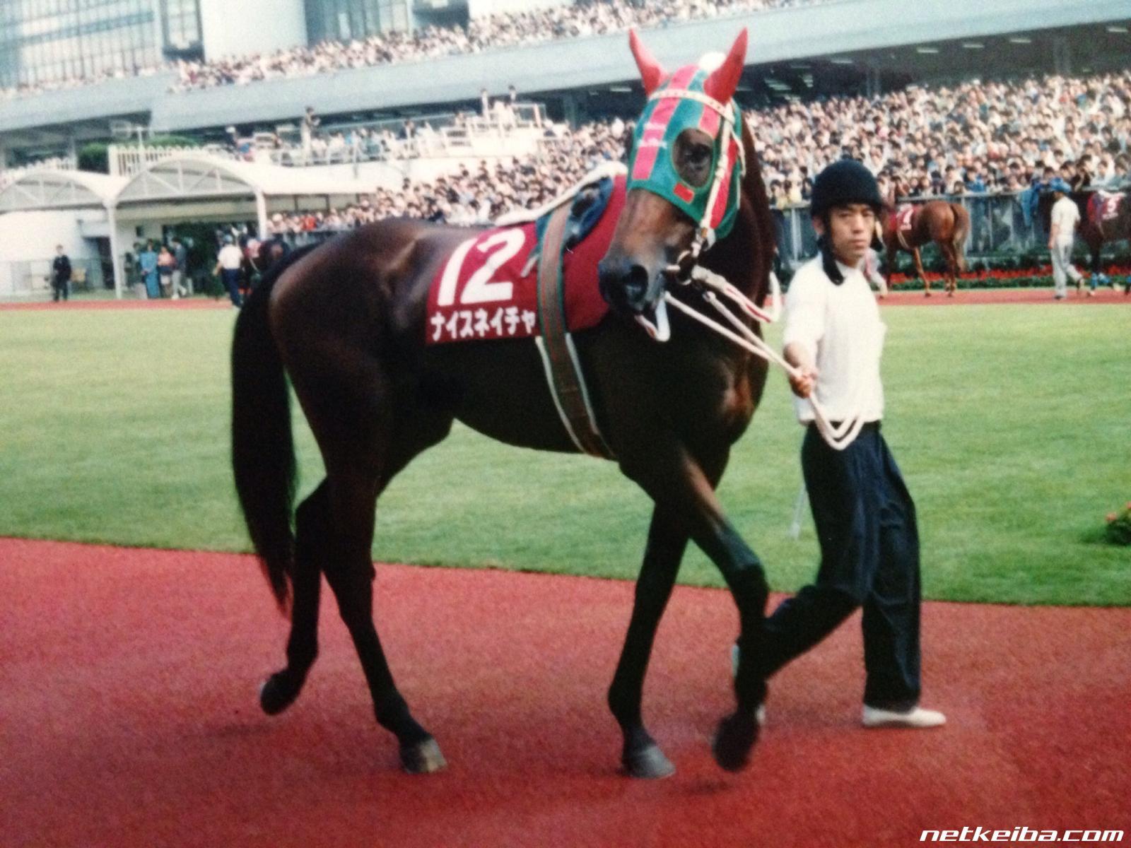 愛すべき名馬たちによる「最強G2名馬決定戦」。出走馬投票を受付中!(受付終了)