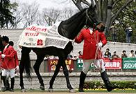 うらかわ優駿ビレッジAERU 今なお元気一杯の28歳のダービー馬(1)