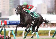 【スプリンターズS】血統分析 近年はサンデーサイレンスの血を引く馬に軍配