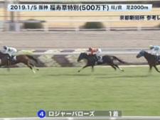 【京都新聞杯2019】参考レース