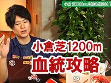 視聴者の質問に答えます『小倉で使える血統の法則を教えてください』/亀谷敬正