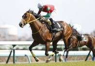 コーフィールドCとメルボルンCの第一次登録に6頭の日本馬たちがエントリー