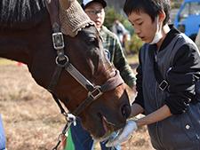 現役調教師たちが取り組む引退馬支援活動 子供からは笑顔も