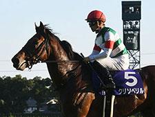 【特集サウジ競馬】 世界の合田が「サウジアラビア競馬」を解説