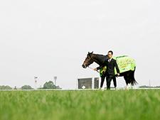 【安田記念】ウオッカの連覇を振り返る「牝馬とは考えられなかった」角居調教師インタビュー