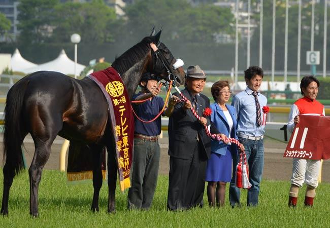 【特別企画】ショウナン国本哲秀氏(2)『ショウナンラグーンはいつかGIを獲れる馬』