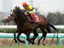 中山記念歴代指数1位は蛯名正義騎手の好騎乗で勝利した良血馬!