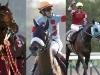 【有馬記念】第1回中間発表 レイデオロが1位、アーモンドアイ2位、オジュウチョウサンが3位!