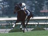 【阪神JF】5馬身差で圧勝した女傑ヒシアマゾン/2歳女王列伝