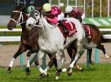 【次走】スマートレイアーは有馬記念へ、戸崎圭太騎手と新コンビ