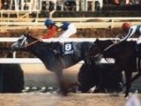 【有馬記念】武豊騎手が騎乗、オグリキャップのあまりにも劇的なラストラン/平成有馬記念列伝(1990年)