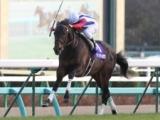 【有馬記念】強豪揃いの3歳世代、ヴィクトワールピサがハナ差で勝利/平成有馬記念列伝(2010年)