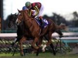 【有馬記念】ブエナビスタの引退レース 三冠馬オルフェーヴルが豪華メンバーの一戦制す/平成有馬記念列伝(2011年)
