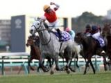 【有馬記念】3歳ゴールドシップがGI連勝 引退レースのルーラーシップが大出遅れから3着/平成有馬記念列伝(2012年)