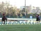 【有馬記念】ラストランのオルフェーヴルが8馬身差V ウインバリアシオンもゴールドシップも置き去りに/平成有馬記念列伝(2013年)