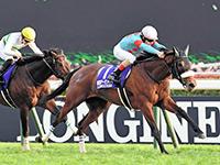 アーモンドアイ世界制圧への期待 世界最強牝馬との対決心待ち