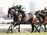 【京成杯】シークレットランは内田博幸騎手、ランフォザローゼスはマーフィー騎手/JRA重賞想定騎手