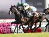 【京成杯】現時点の3歳馬にはタフな条件、スタミナやキャリアが必要/JRAレース展望