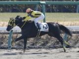 【中山3R新馬戦】フラッシングジェムが人気に応え快勝/JRAレース結果